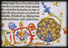 The Artistry of the Lost GutenbergsOnce the rubrication was complete, the sheets could be further enhanced with ornate gold work and hand-painted margin decorations called illuminations. Margin decorations might include religious miniatures, dragons, peacocks, falcons and/or an array of medieval flowers