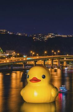 Rubber Ducky in da Burgh!