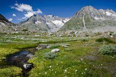 世界遺産 スイス・アルプス ユングフラウ‐アレッチュ スイス・アルプス ユングフラウ‐アレッチュの絶景写真画像  スイス