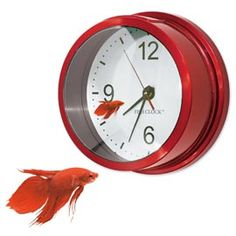 Watching time go by is fun with the Fish Clock. A real fish bowl and working clock.