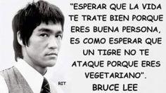 """Buenisima frase de Bruce Lee=""""Esperar que la vida te trate bien pq eres buena persona, es como esperar q un tigre no t ataque pq eres vegetariano"""";-)"""