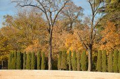 El parque del Retiro Madrid