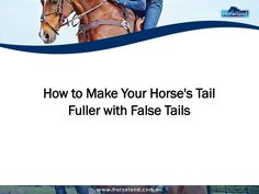 Using a #falsetail is a great way to make your #horse's tail look fuller. Learn how to put one on your horse in this presentation from Horseland.com.au.