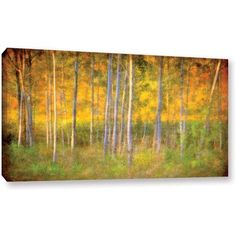 Antonio Raggio 'Into the Wood' Gallery-Wrapped Canvas, Size: 26 x 48, Green
