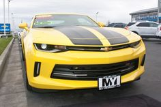 For those who suffer from OCD, Obsessive Camaro Discorder.