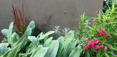 stadstuin VughtDenkers in Tuinen | Ontwerpers van stijlvolle en tijdloze tuinen