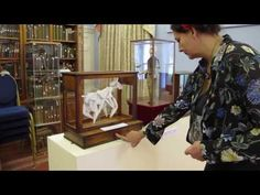 The House of Automata - YouTube Attention Span, Kinetic Art, Automata, Puppets, Gears, Youtube, Fun, House, Gear Train
