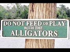 No feeding the Alligators .