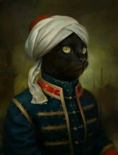 Cat Soldier