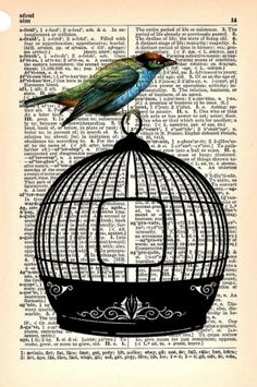 Jailbird, Vintage Dictionary Print, 5 x 7, StayGoldMedia by sue