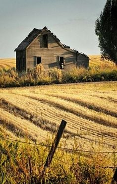 Old Farm House At The End Of The Field