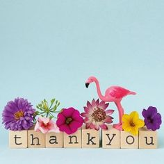 Square greeting card - Dietske Klepper - thank you - Paper ant Flamingo Party, Flamingo Decor, Pink Flamingos, Flamingo Outfit, Thank You Wishes, Thank You Messages, Thank You Cards, Thank You Greetings, Happy Wishes