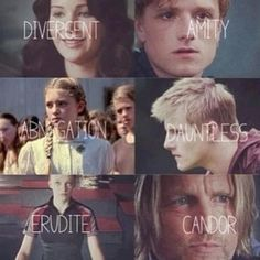 funny hunger games and divergent | Hunger Games / Divergent