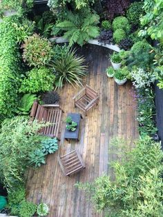 Urban Garden Design Small Jungle garden: Nicola Stoken Tomkins My garden is, like my house, tiny. Being an inner-city garden it is also overlooked (which . Small Courtyard Gardens, Small Courtyards, Small Gardens, Outdoor Gardens, Terrace Garden, Garden Seating, Small Tropical Gardens, Rooftop Terrace, Tropical Plants