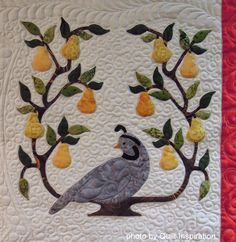 Partridge in a Pear Tree, in: Baltimore Christmas by Sue Maitre, quilted by Linda Hrcka, 2014 AZQG.  Pattern by Pearl Pereira. Photo by Quilt Inspiration.