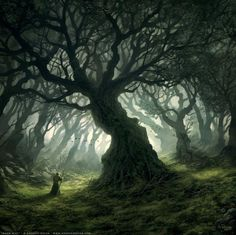 The Old Forest, Bree-Land. (LOVE this!!)