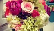 ما هي أسماء الورود Beautiful Moon Flowers Rose
