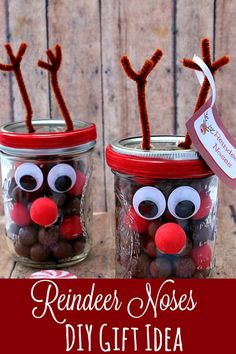 Reindeer Noses DIY Gift Idea - Adorable and Easy to make, this Reindeer Noses DIY Gift Idea is PERFECT for kids, teachers, friends and more!