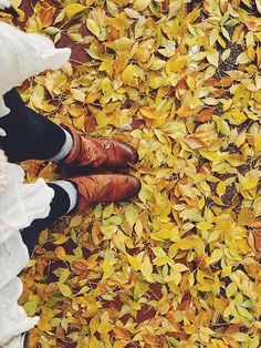 Yes..Love Autumn..can't wait to kick my size 2's around in leaves like this!