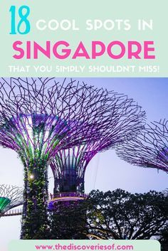 Singapore travel guide. Click to read our guide to the coolest things to do in Singapore. Where else can you have heavenly noodles, see loads of wildlife, go shopping, relax on the beach and marvel at the futuristic skyline..