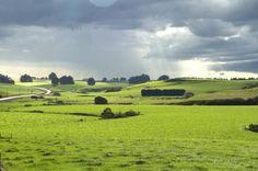 Farmland, The Catlins, New Zealand