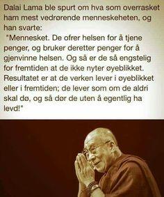 Dalai Lama, Memes, Words, Jokes, Meme, Horses