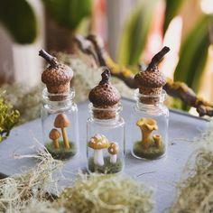 pocketmoss:   Shop has been updated with all sorts... -                       Pocket Moss