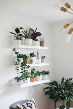 10 Tips for Plant Aesthetic in Small Space Decorating Creating a gorgeous plant aesthetic in small space decorating is very doable. Here are 10 decorating tips for any small or minimalist home. Plant Aesthetic, Decorating Small Spaces, Tropical Decor, Aesthetic Rooms, Plant Decor, Plant Shelves, House Plants Decor, Living Room Plants, Plant Wall