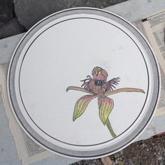 """W.A. """"Dancing Orchid"""" painted on bisque ware   Dianne Collins, Melbourne"""