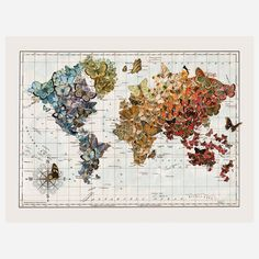 Butterfly Migration Map 18x24