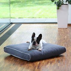 Hundebett Boy mit einem strapazierfähigen Bezug aus Baumwolle. 7 Größen, viele Farben