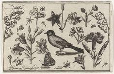 Bloemen, vlinder en een vogel, Nicolaes de Bruyn, 1594, te vinden in Het Rijksmuseum, Amsterdam