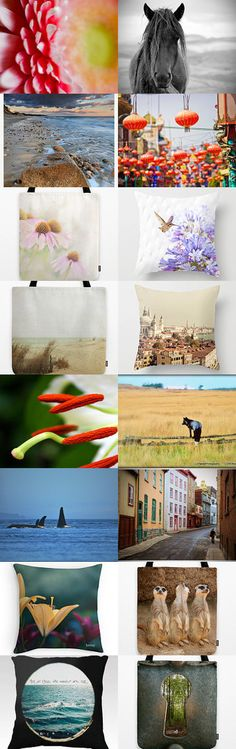 Functional fine art photography by Samantha Miller on Etsy--Pinned with TreasuryPin.com