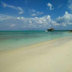 Yep. It's definitely better in the #Bahamas! #Andros #island #beach
