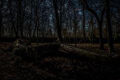Locke Park Barnsley Ian Moody Photography-11 Barnsley, Country Roads, Park, Photography, Photograph, Fotografie, Parks, Photoshoot, Fotografia