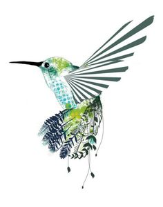 Hummingbirds are amazing. Pair with dream catcher and I have a great tattoo idea, for Native American, grandma, and a touch of Disney lol