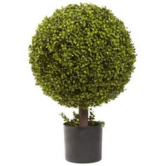 Nearly Natural 5919 Boxwood Ball Topiary, 27-Inch, Green *** Check this awesome product by going to the link at the image.