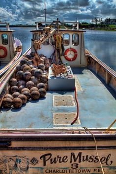 Mussel commercial fishing, Prince Edward Island, Canada | Anne McKinnell Photography