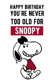 Happy Birthday Brother From Sister, Happy Birthday Friend, Birthday Quotes For Best Friend, Snoopy Birthday, Birthday Cards, Happy Birthday Chicken, Snoopy Quotes, Peanuts Quotes, Snoopy Pictures