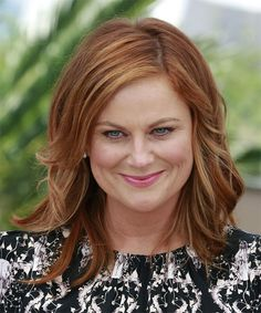 Amy Poehler Long Straight Hairstyle - Medium Red