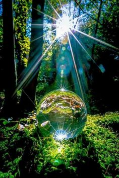 Science Discover crystal ball in the forest Macro Photography Creative Photography Amazing Photography Globe Photography Beautiful World Beautiful Places Beautiful Forest Cool Photos Beautiful Pictures Macro Photography, Creative Photography, Amazing Photography, Globe Photography, Germany Photography, Portrait Photography, Photography Lighting, Free Photography, Photography Workshops