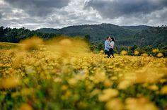 nova fotografia casamentos fine art sessao Noivado artistica Natureza campo Flores Primavera Sintra Serra Foto de Sonho