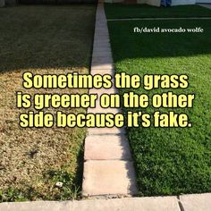 The grass is greener bc it's fake