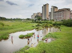 Bishan Park,  Singapore, Atelier Dreiseitl-  A repurposed concrete water canal into a peaceful, meandering creek, producing an absorbing and welcoming public space.