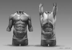 anatomy_study_3_by_nastyj-d4i82fd.jpg (900×636) Human Anatomy Drawing, Human Anatomy For Artists, Human Figure Drawing, Muscle Anatomy, Body Anatomy, Anatomy Study, Art Reference, Anatomy Reference, Anatomy Practice