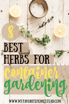 Love cooking with fresh herbs? These 8 best herbs for container gardening will spice up your culinary masterpiece! Easy to grow and maintain herbs are perfect for beginner gardeners. Starting A Vegetable Garden, Backyard Vegetable Gardens, Growing Herbs, Growing Vegetables, Container Plants, Container Gardening, Dry Sage, Cooking With Fresh Herbs, Creeping Thyme