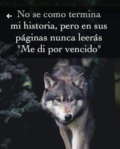 """""""VIVIR DE UNA MANERA QUE REFLEJE LOS VALORES DE UNO NO ES SOLO SOBRE LO QUE HACES, SINO TAMBIÉN SOBRE CÓMO HACES LAS COSAS"""", DEBORAH RAY. Que pasen una maravillosa noche y un estupendo Domingo amig@s mí@s. Lion Quotes, Wolf Quotes, Pretty Quotes, Amazing Quotes, Motivational Phrases, Inspirational Quotes, Der Steppenwolf, Ramses, Wolf Life"""