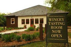 September Oaks #vineyard #travel