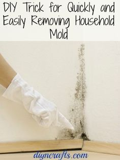 DIY Trick for Quickly and Easily Removing Household Mold Good places to check for mold are under sinks, in your basement and just anywhere that may have retained moisture at some point. If you find it, you can easily remove it with regular vinegar.
