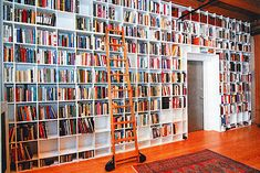 steven pinker and rebecca goldstein's home library.
